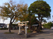 Kashinosuijingu