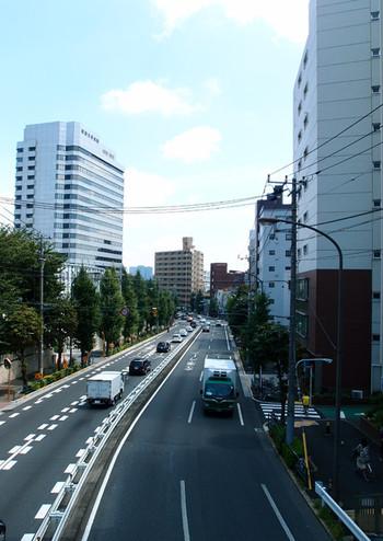 Saikachi_sl