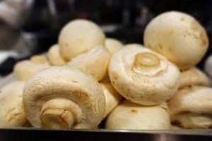 Mushroom00