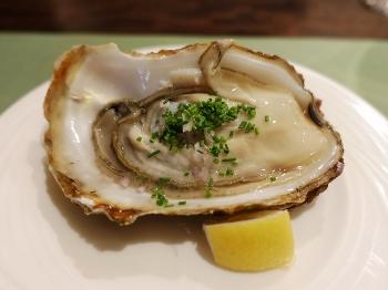 Katori_oyster00