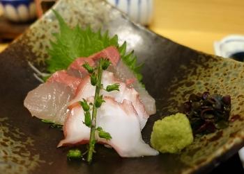 Kitayaa_l_sashimi01